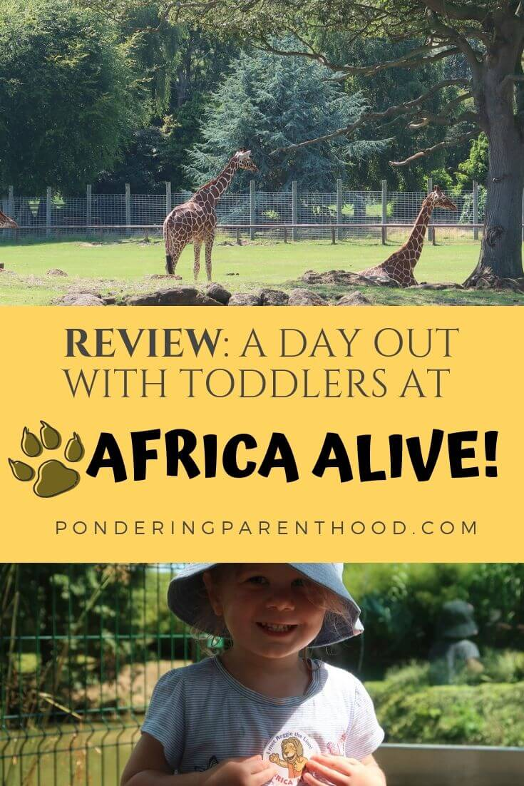 A pinnable image for this review of Africa Alive.