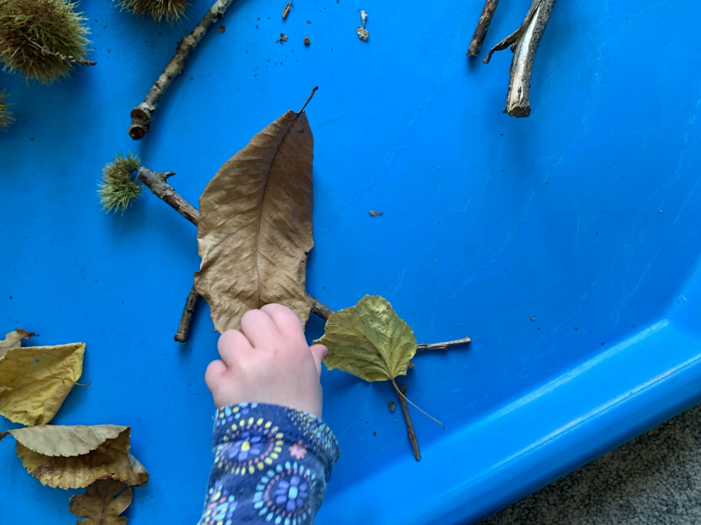 M places a leave onto some sticks arranged as a stick man with a sweet chestnut case hat.