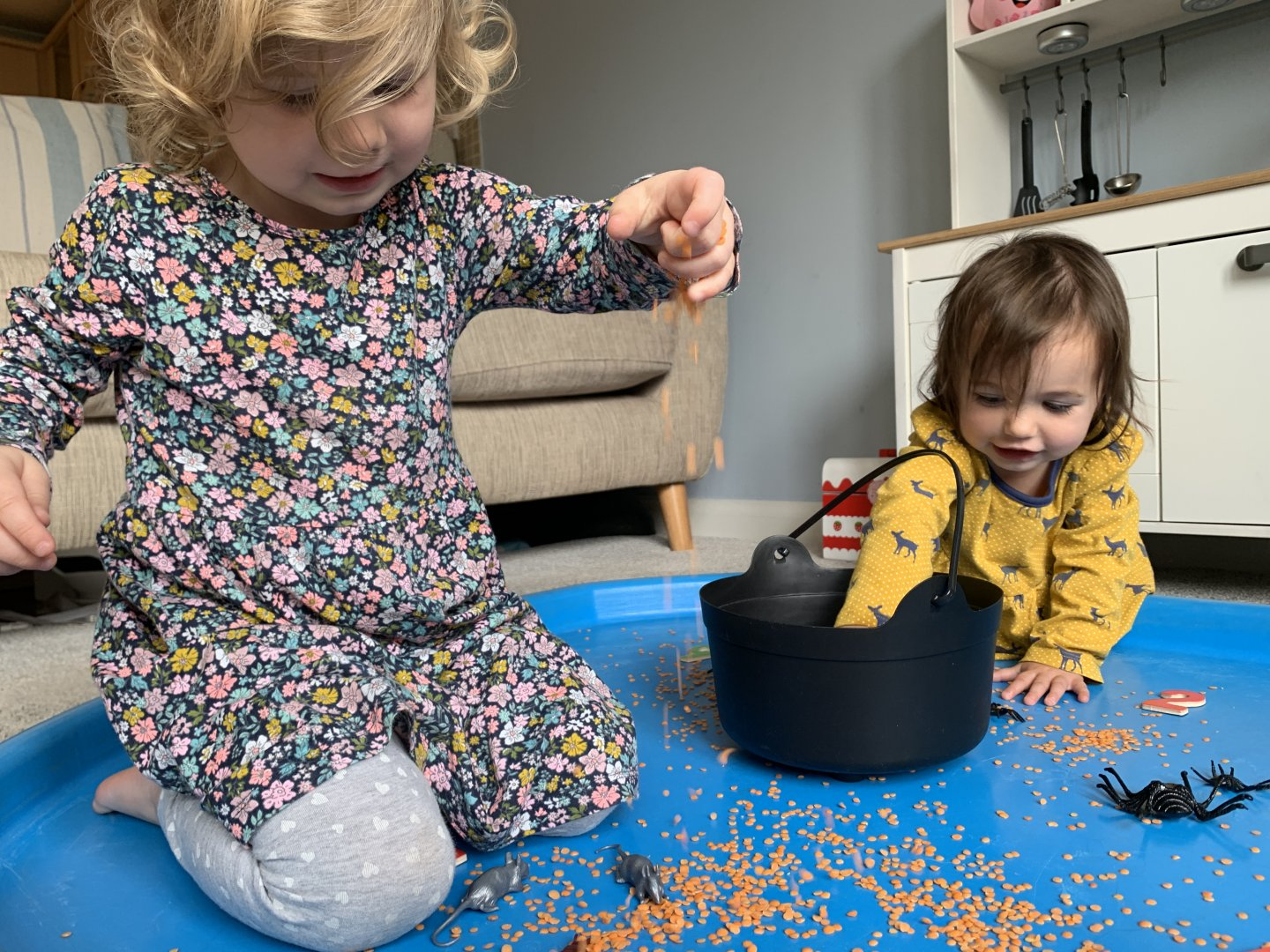 B digging her hand into the toy cauldron in the background, while M sprinkles lentils into the tuff spot in the foreground.